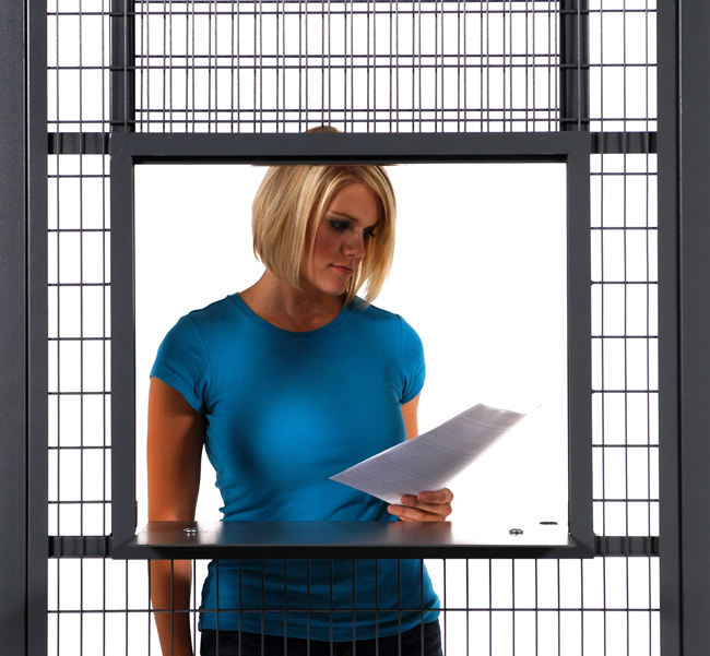 Service Window WireCrafters Secure Enclosure