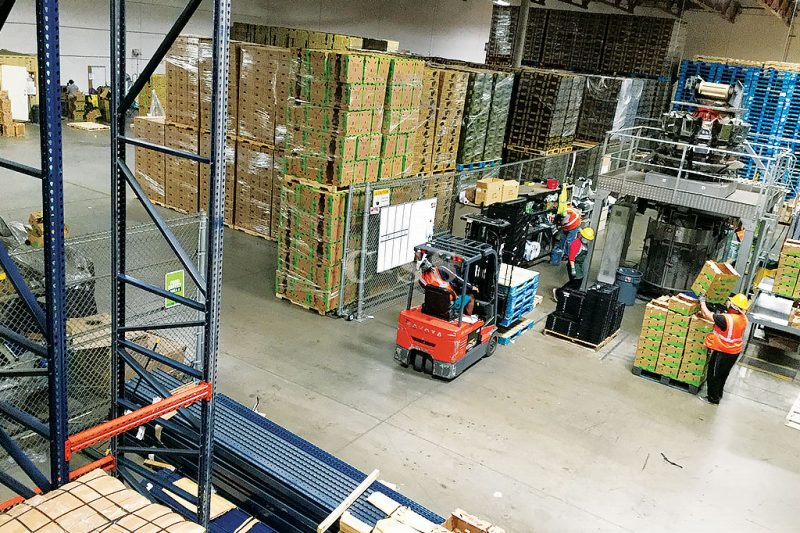Protected Company Produce with Drive in Pallet Racking System