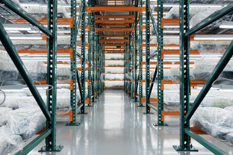 Pallet Racking System for Healthy Plants Business