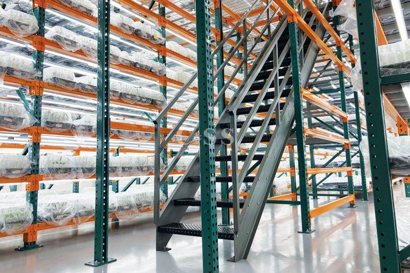 Seed Company Warehouse Pallet Racks Keeps Plants Safe