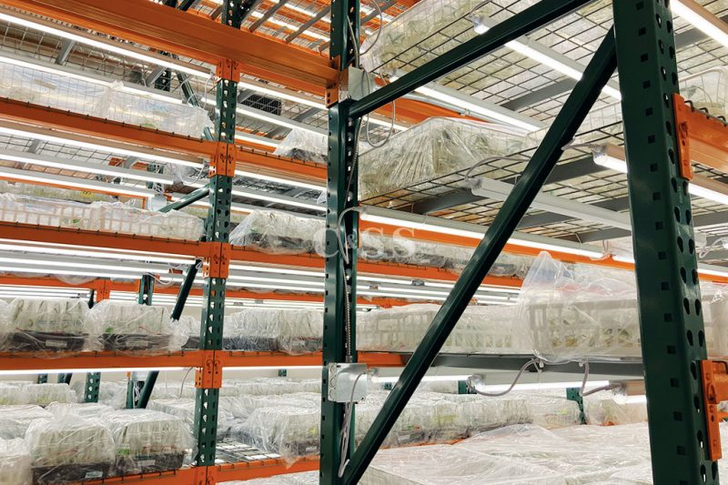Warehouse Racking Parts to Support Plant Inventory